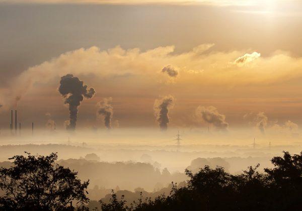 Cegah Bumi Semakin Panas, Yuk Simak Cara Mengurangi Jejak Karbon!