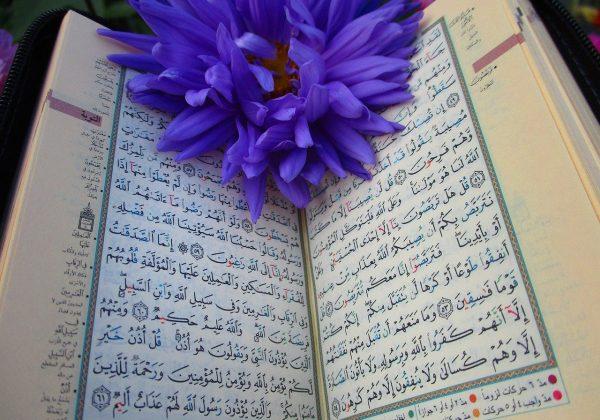 Meskipun Pendek, Muslim Wajib Tahu Keutamaan Surat Al Ashr