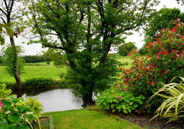 12 Ways to Garden Without a Backyard